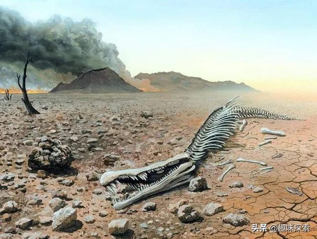getInterUrl?uicrIvZQ=065ed2d50ecb80630b4cbb12e9f51208 - There have been more than one case of 30,000 years of extinction. Why did the long-lost species reappear?
