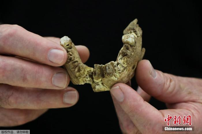 From more than 100,000 years ago! A new type of ancient human fossil found in Israel