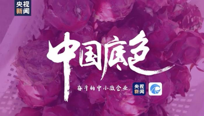"Tianyancha assists the documentary ""Chinese Background"" to provide professional information and data"