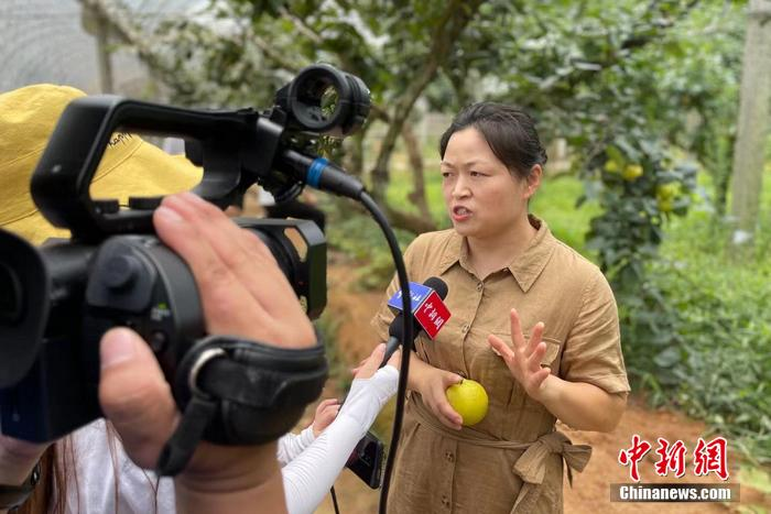 [Internet media revolution in the old district] Jianning, Fujian: the development of characteristic industries in the old district, supporting the people to get rich(6)