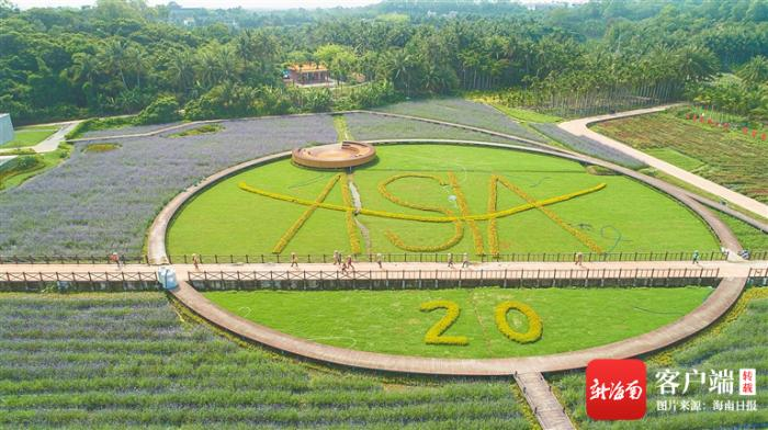 Nanqiang Village, Boao Town, Qionghai City: Hundred acres of flowers bloom to welcome guests